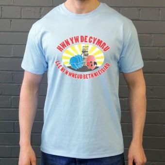 Hwn Yw De Cymru... T-Shirt